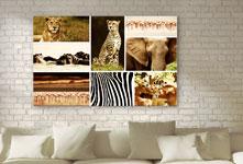 Photo-toile-collage-animaux-salon