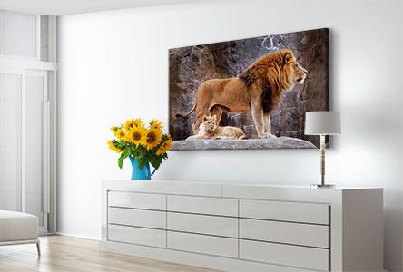 Salon-toile-lions-zoo